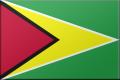 Flag Guyana.png