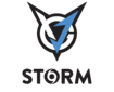 Team logo VGJ.Storm.png