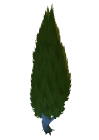 Immortal Garden Tree Cypress 1 Preview.png