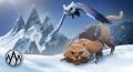 El Gato banner.jpg