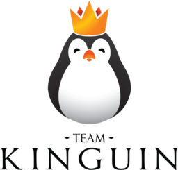 Team logo Team Kinguin.png