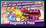 Beginner's Pack.png