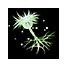 Green Mushroom Spore