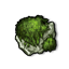 Skull Wood Moss