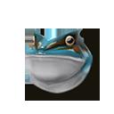 Aqua Froggo