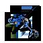 The Blue Petunia