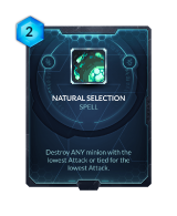 Natural Selection.png