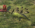 Protoceratops.png