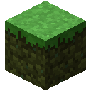 Slimy Grass.png