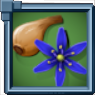 CamasBulb Icon.png