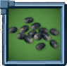 PapayaSeed Icon.png