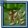 CedarSeed Icon.png