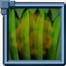BoiledShoots Icon.png