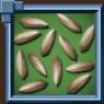 SagebrushSeed Icon.png