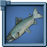 Salmon Icon.png