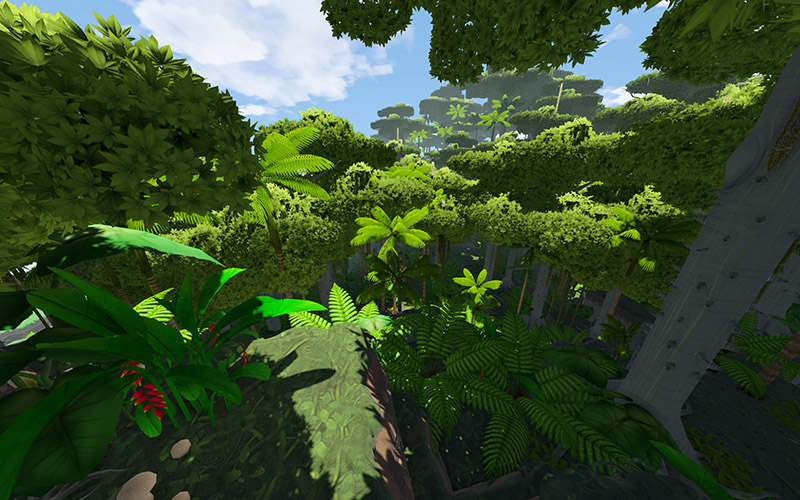 Rainforest - Official Eco Wiki