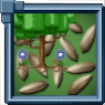 BirchSeed Icon.png