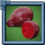 PricklyPearFruit Icon.png