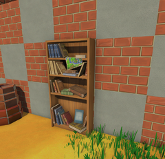 Bookshelf Placed.png