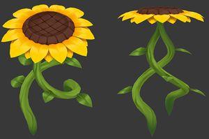 Jump Sunflower