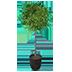 Artificial Indoor Plant 03.png