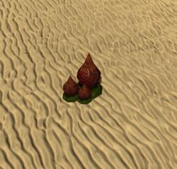 Alien Spike Lemon (Plant).png