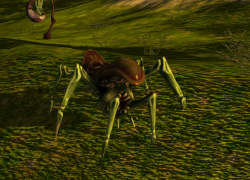Alien Insect.png