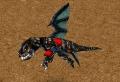 Black Dragon Whelp.jpg