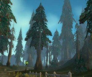 Silverpine Forest day.jpg