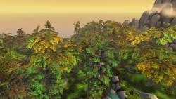Pei-Wu Forest.jpg