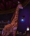 Aurosalia giraffe.jpeg