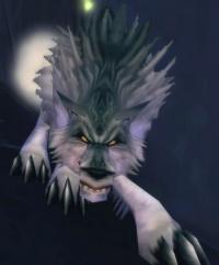 Imagen de Aparición de can