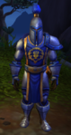Guardia Escudo de Tormenta