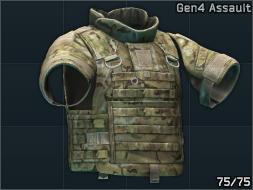 Gen4assault.png