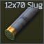 12x70 Led slug