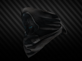 Shroud View.png