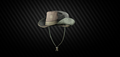 Cow boy hat.png