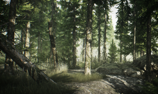 Banner woods.png