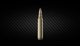 5.56x45IMAGE.png