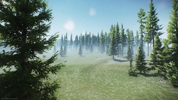 Woods-Showcase-1.jpg