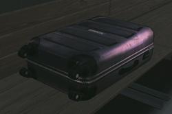Plastic suitcase.png