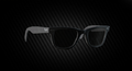 RayBench Hipster Reserve Sunglasses.png