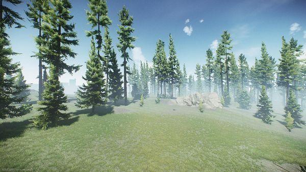 Woods-Showcase-3.jpg