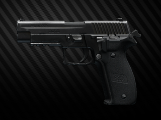 P226.png