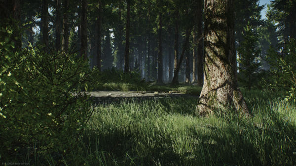 Woods-Showcase-5.png