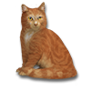 Poe2 pet backer cat Ginger Demon icon.png