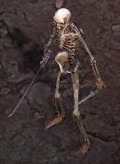 Skeleton-Rogue.jpg