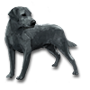 Poe2 pet backer dog Pes icon.png