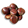 Poe2 palohe nuts icon.png