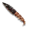 Ceremonial Obsidian Knife - Official Pillars of Eternity Wiki